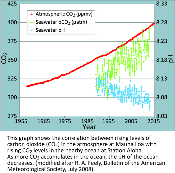 CO2 in de atmosfeer en de oceanen